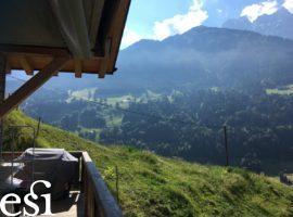 Val d'Illiez - 29.06.2018 -02